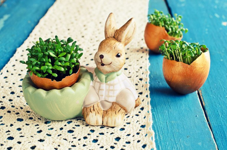 Ein Hasentopf zu Ostern
