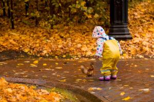 Inklusion in der Kita: Herbstliche Angebote für inklusive Kita-Gruppen