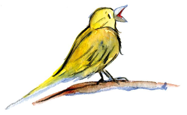Fantasiereise – Der gelbe Vogel